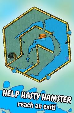 仓鼠的水迷宫Hasty Hamster